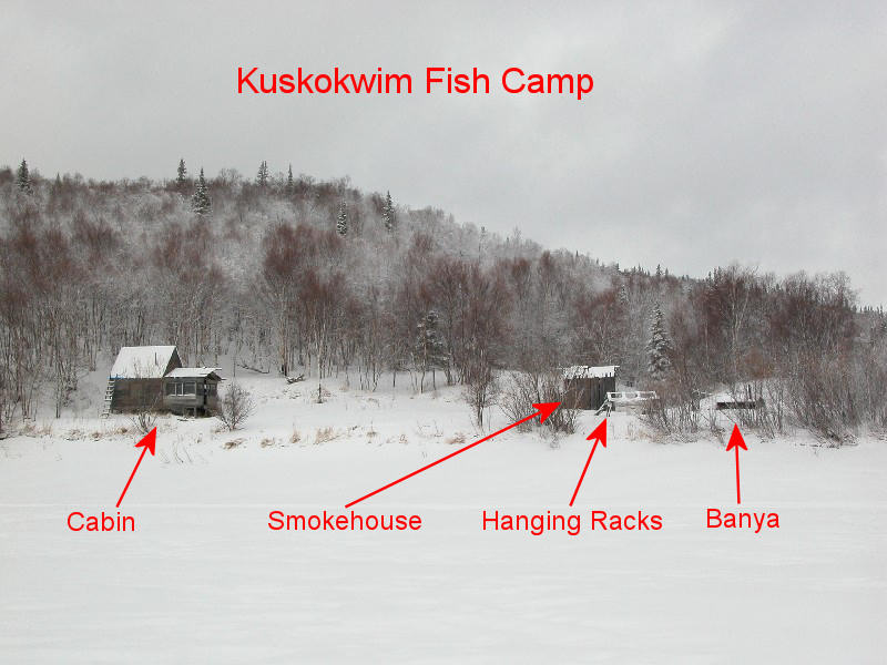 kalskag guys Aniak, lower kalskag and kalskag will be getting boxes in tomorrow with kale, zucchini, lettuce and beets  wtg guys +6 the kuskokwim corporation added 4 new photos.